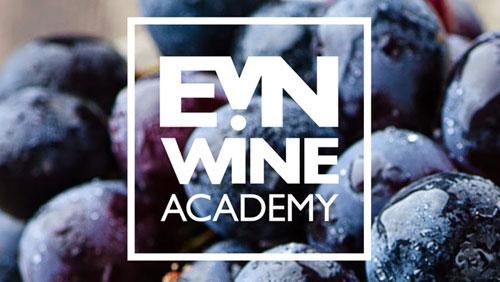 Академия вина EVN