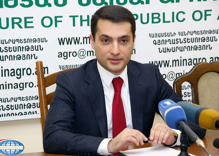 ANAU President of the Board will talk about Foreign Economic Affairs of the RA