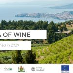 The Sea of Wine Project to Promote the Black Sea Region as a Wine Tourism Destination