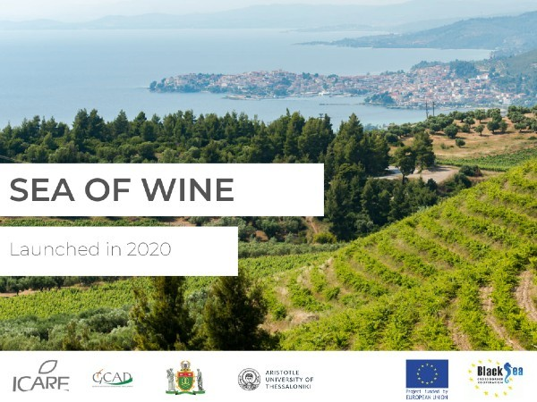 Выпускники Центра обучения агробизнесу реализуют черноморский региональный проект «Море вина»