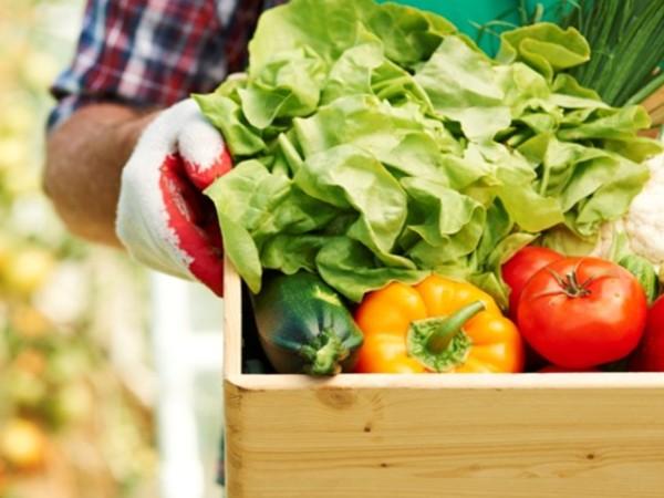 Կանաչ գյուղատնտեսության նախաձեռնության հայտարարած մրցույթի հայտադիմումների վերջնաժամկետը փոխվել է